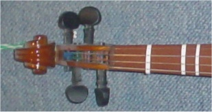 violin bånd